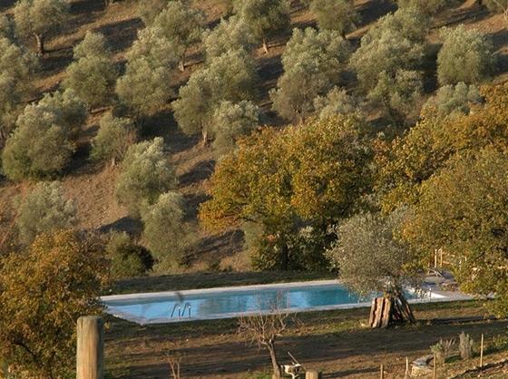 Villa Poggio Gatto 6,7 pers, een van onze vakantiehuizen in Toscane