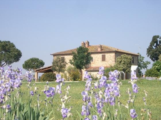 Landhuis Il Casolare 7,8,9 pers, een van onze vakantiehuizen in Toscane