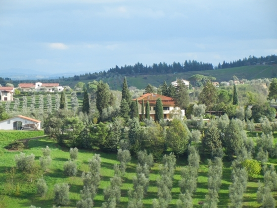 Agri Casa Miniato 2,4,5,6,7 pers, een van onze vakantiehuizen in Toscane
