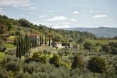 Villa Il Frantoio: Pendolino + Leccino (16+1 pers.)