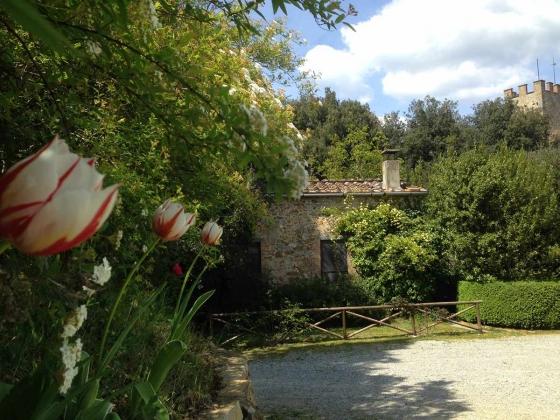 Schooltje (2 pers.), een van onze vakantiehuizen in Toscane